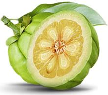 Buy nidora weight loss image 10